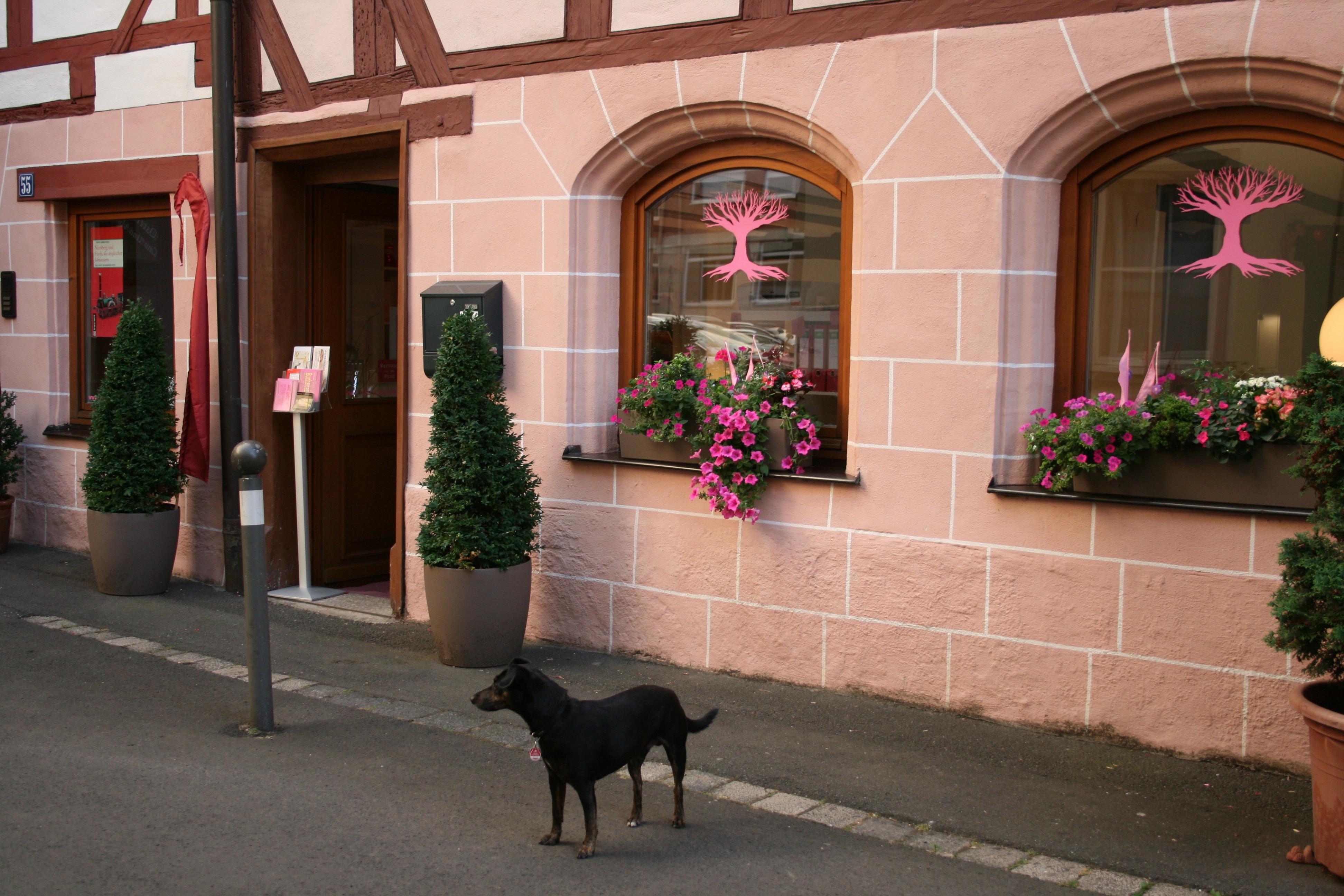 Werbetexte für Print und Internet aus dem Texthaus in Nürnberg!
