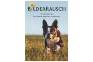 Dynamisch: Manuela Rauschning wirbt natürlich mit einem eigenen Foto für ihre Hunde-Outdoorfotografie.